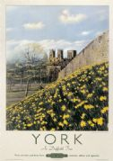 York in Daffodil Time, Yorkshire. Vintage British Railway Travel poster. 1950